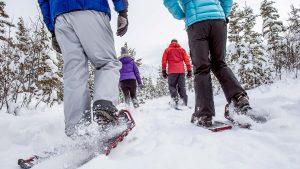 Excursiones con raquetas de de nieve