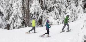 Rutas guiadascon raquetas de nieve